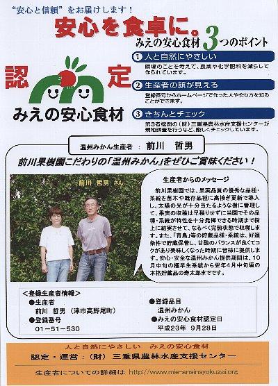 JPG食材みかん400
