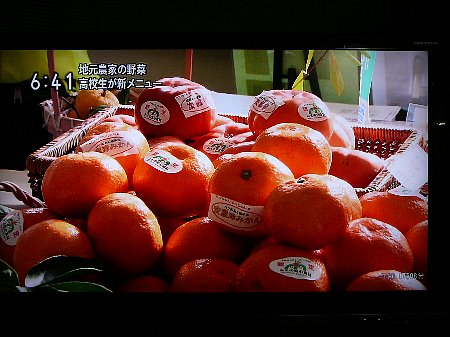 みかんと柿も