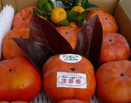 小:柿とタチバナ
