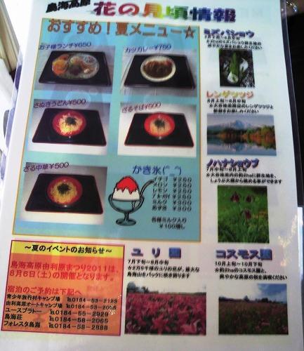 ヤマユリ 夏めにゅー02565