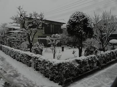 立春の降雪