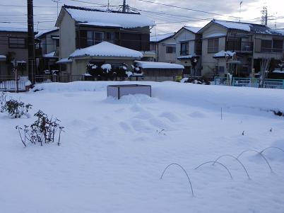 208大雪家庭菜園