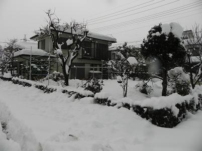 雪景色西側215