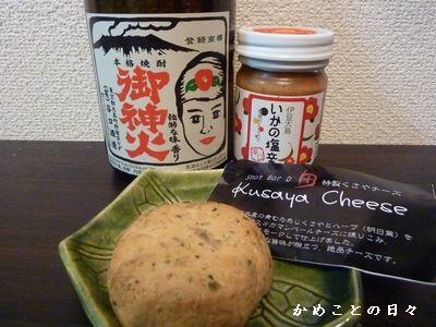 P1340504-oshima.jpg