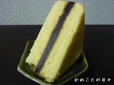 P1360329-shi.jpg