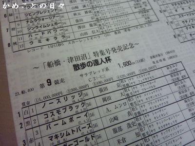 P1400798-shin.jpg