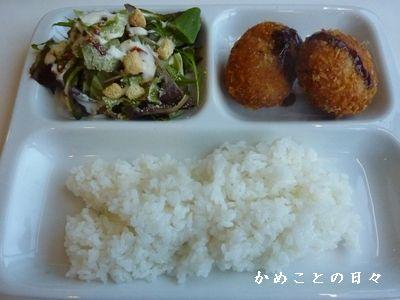 P1420160-lunch.jpg