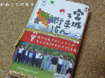 P1420720-rice.jpg