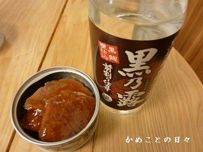 P1440470-yamato.jpg