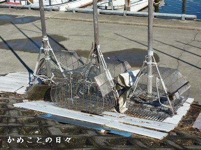 P1440776-kaitori.jpg