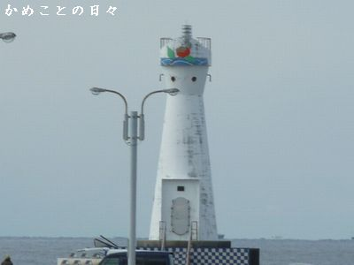 P1440959-am.jpg