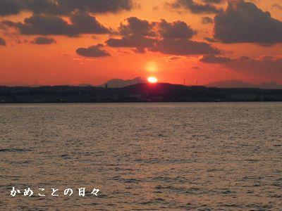 P1450045-sun.jpg
