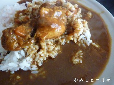 P1450959-curry.jpg