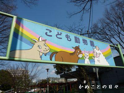 P1460384-zoo.jpg