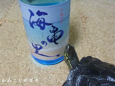 P1480552-sake.jpg