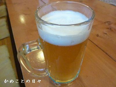 P1490337-white.jpg