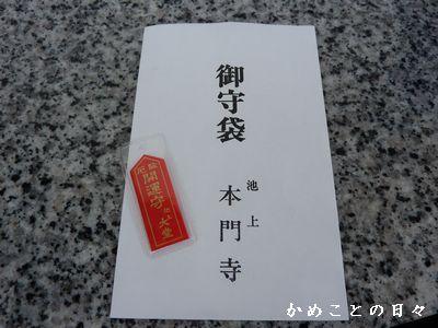 P1500487-mamori.jpg