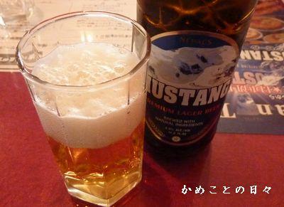 P1500524-beer.jpg