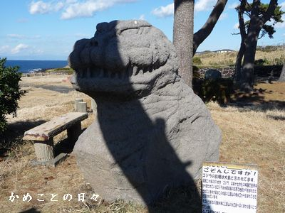 P1600568-goji.jpg