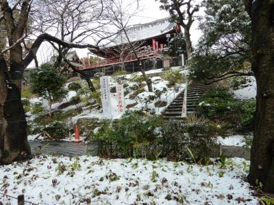 00 上野雪景色