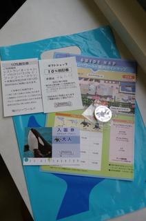IMGP6365.jpg