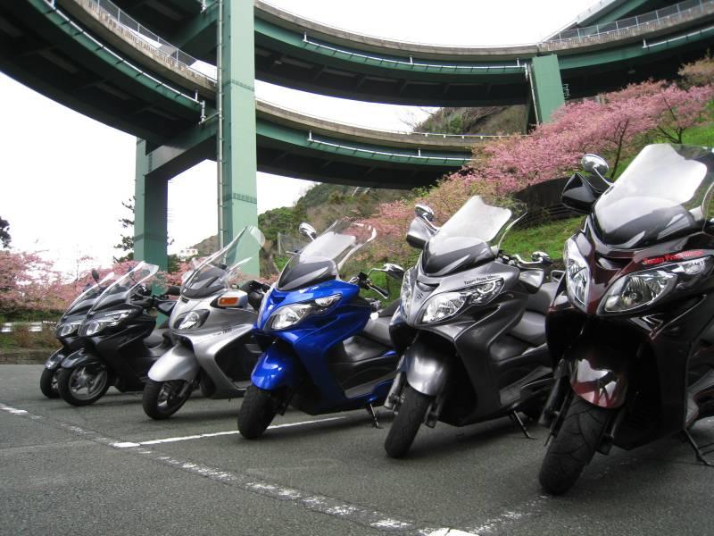 河津桜ツー2009-6
