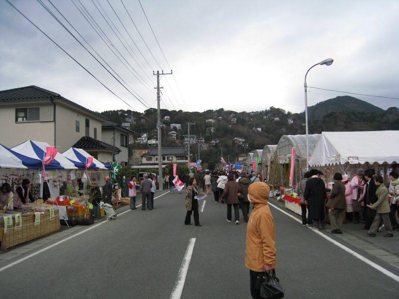 河津桜ツー2009-9