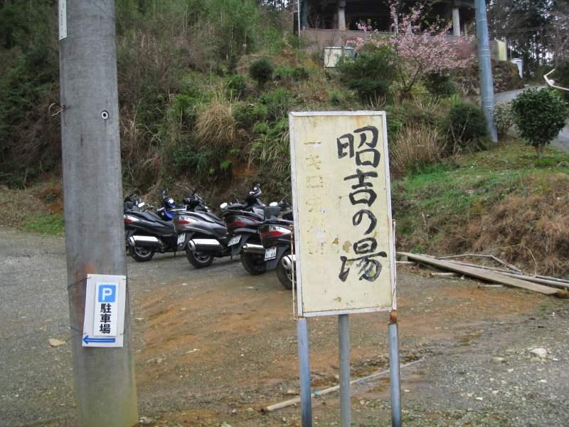 河津桜ツー2009-15