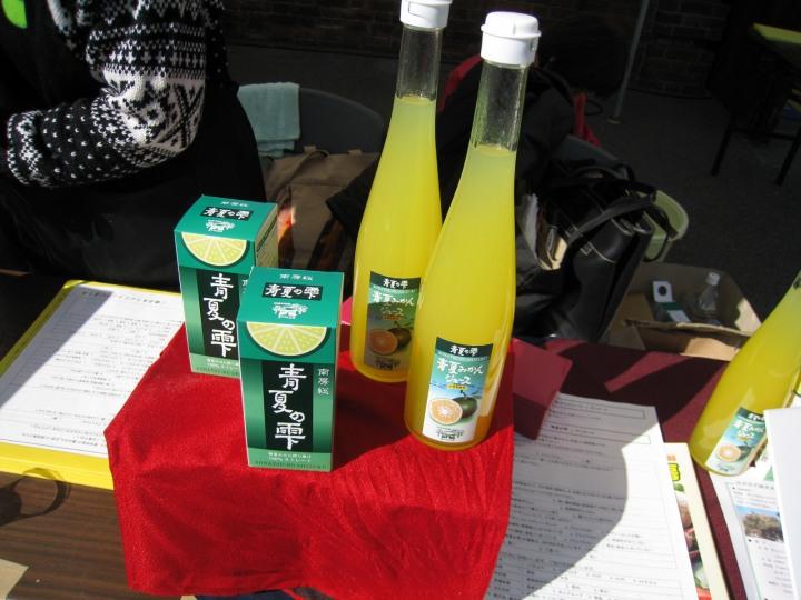 春を探して館山ツー2010-9