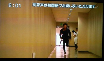 yanebeyanopurinsu_100.jpg