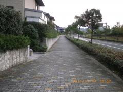 IMGP0942_convert_20111114233510.jpg