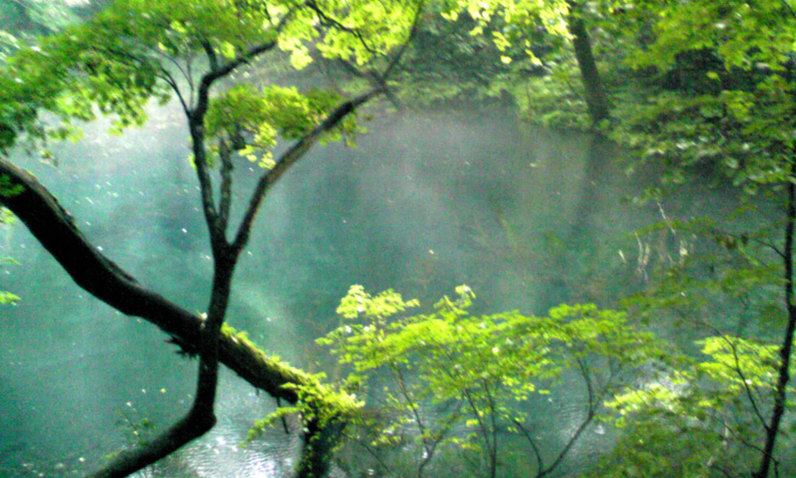 青森県十二湖の青池-08150005