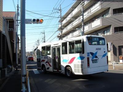 DSC00015-m.jpg