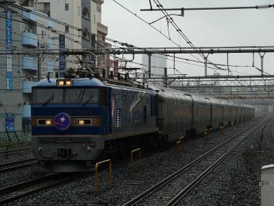 DSC06561.jpg