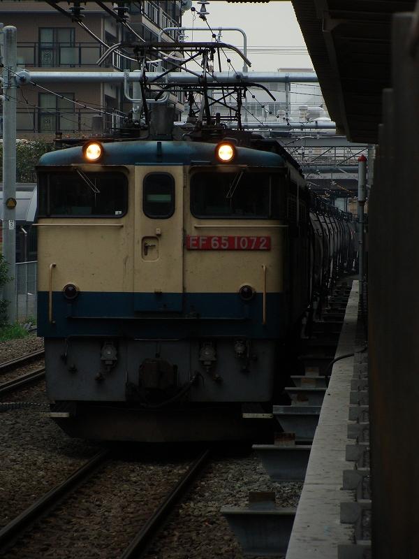 DSC07542.jpg