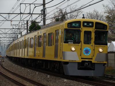 DSC08072.jpg