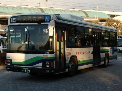 DSC08497.jpg
