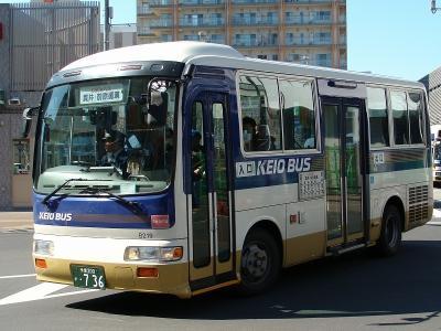 DSC09990-m.jpg