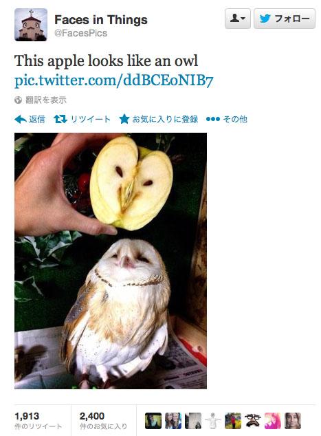 フクロウ似のリンゴ