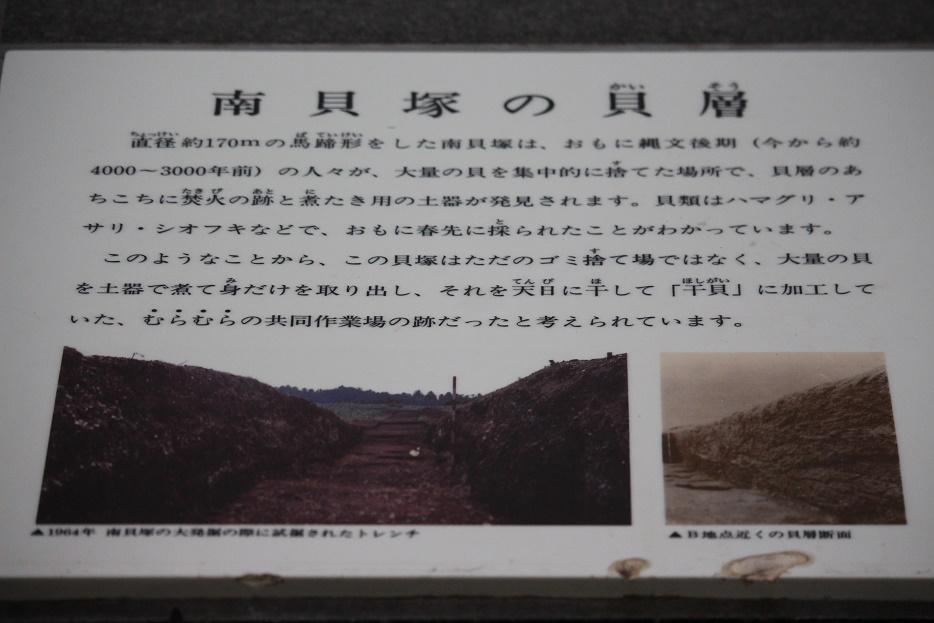 20141109-02.jpg