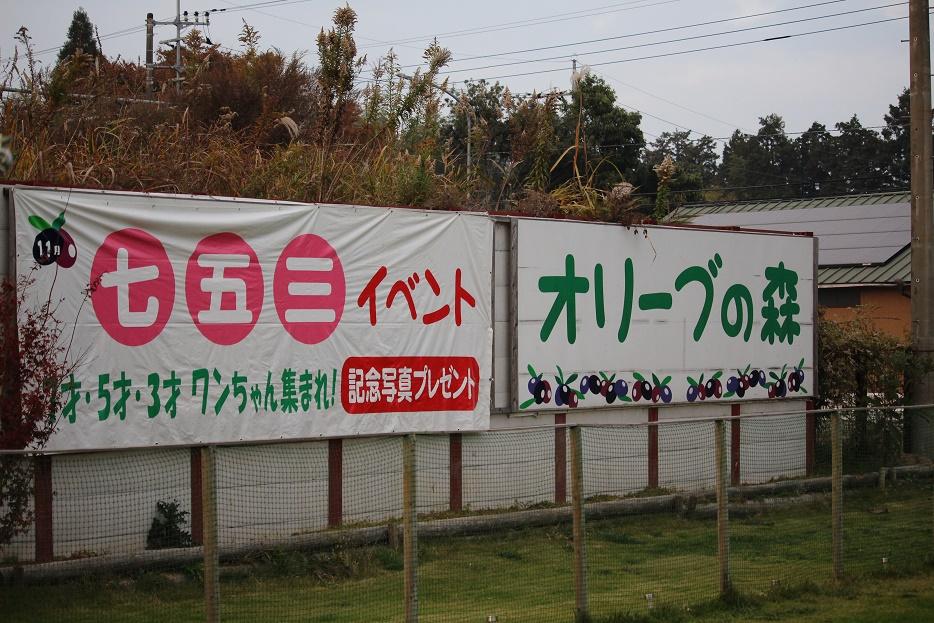 20141124-01.jpg