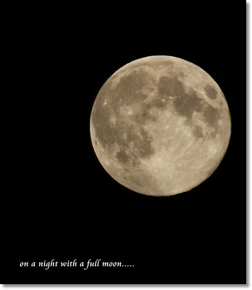 IMG_3638満月の夜に