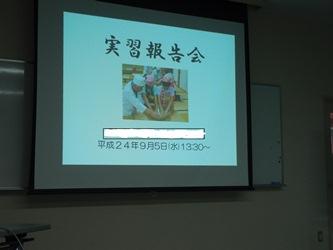 P9051008.jpg