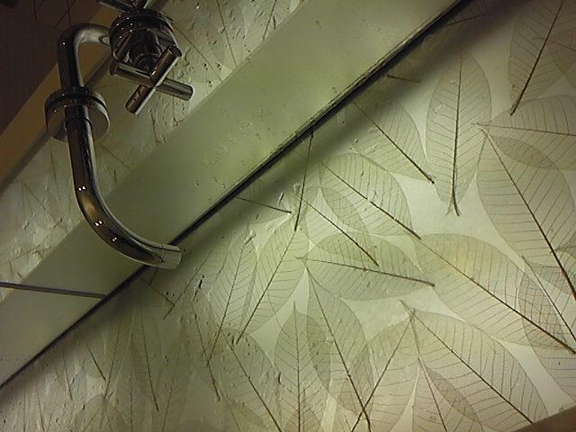 落ち葉の手洗い