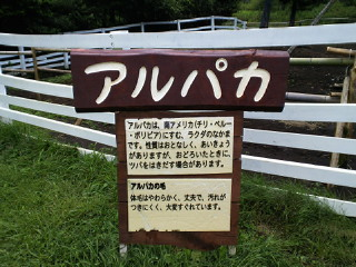 2010-07-31 09:03:19