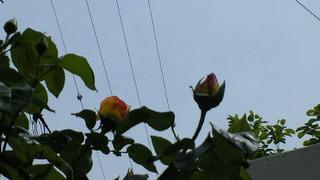 2011-05-06 20:57:19