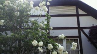 2011-05-08 16:29:22