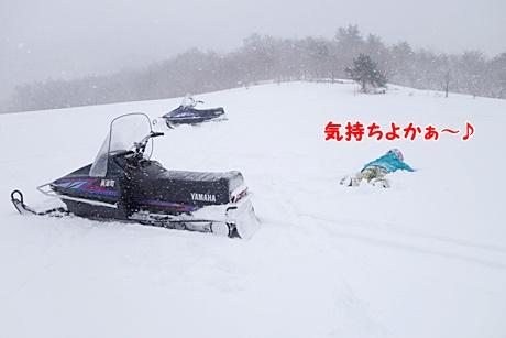 DSC02439.jpg
