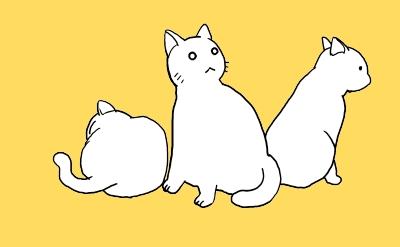 猫たちの沈黙改