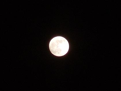 20時半ごろに撮った満月ポン